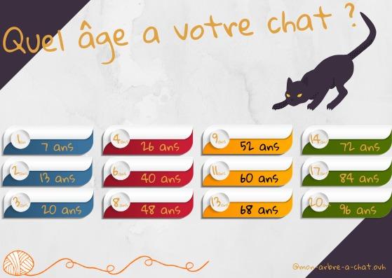 Correspondances de l'âge du chat